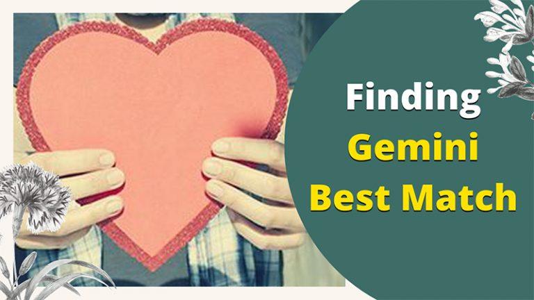 Finding Gemini Best Match