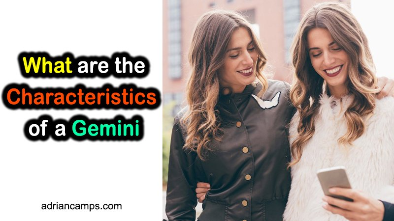 What are the Characteristics of a Gemini (7 Key Traits)